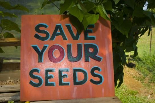 saveyourseeds